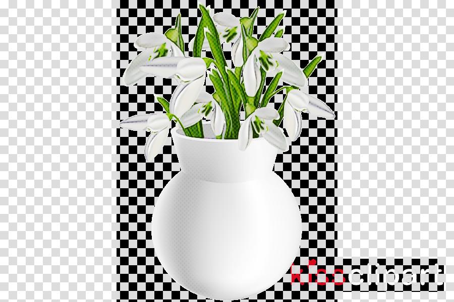 flower white flowerpot snowdrop vase