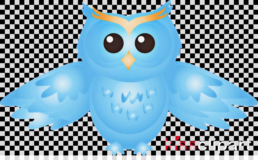 owl bird snowy owl bird of prey blue