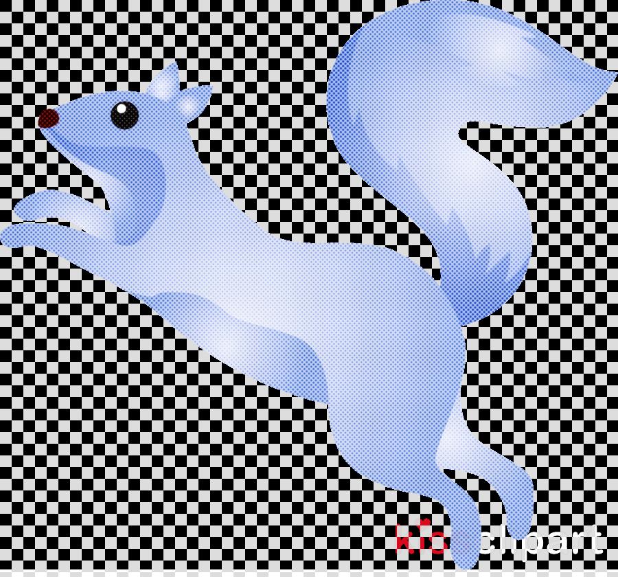 california sea lion animal figure tail squirrel