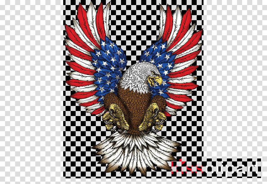 eagle wing bird bald eagle accipitridae