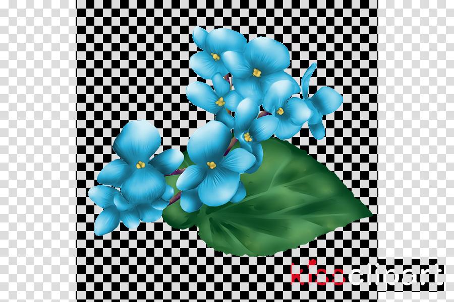 flower blue plant aqua turquoise