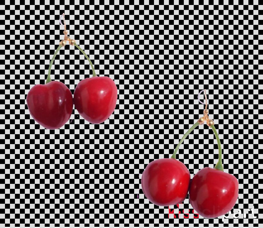 cherry red fruit plant earrings