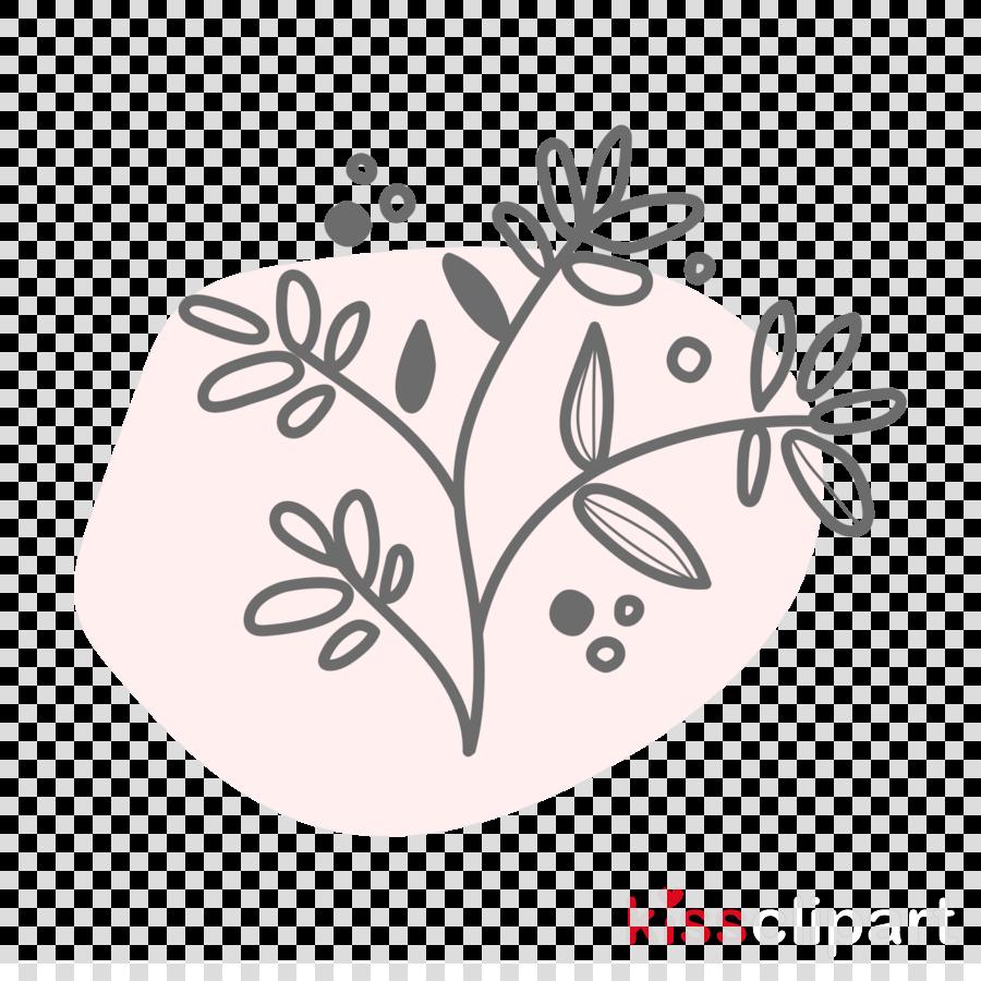 flower leaf plant pedicel wildflower