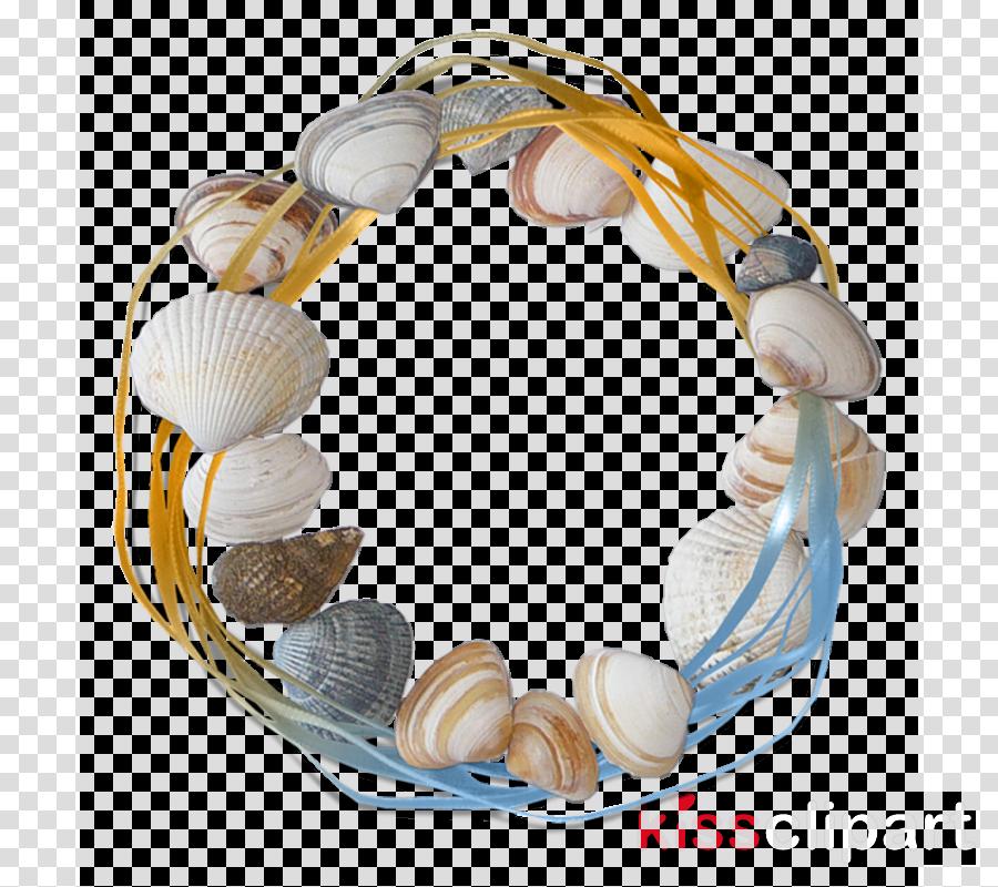 bracelet jewellery bead jewelry making shell
