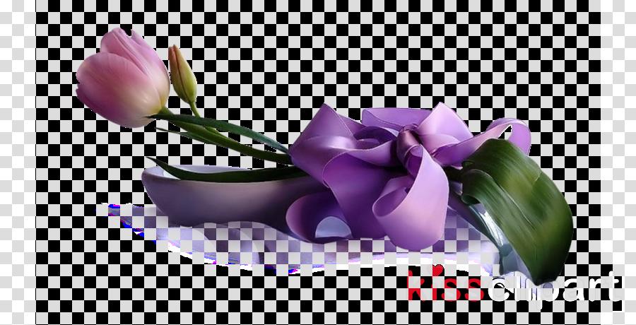 violet purple flower petal plant