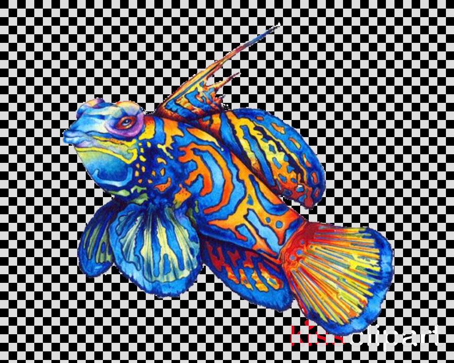 blue fish fish electric blue animal figure