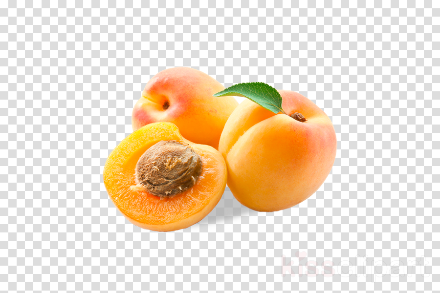 food fruit natural foods plant apricot