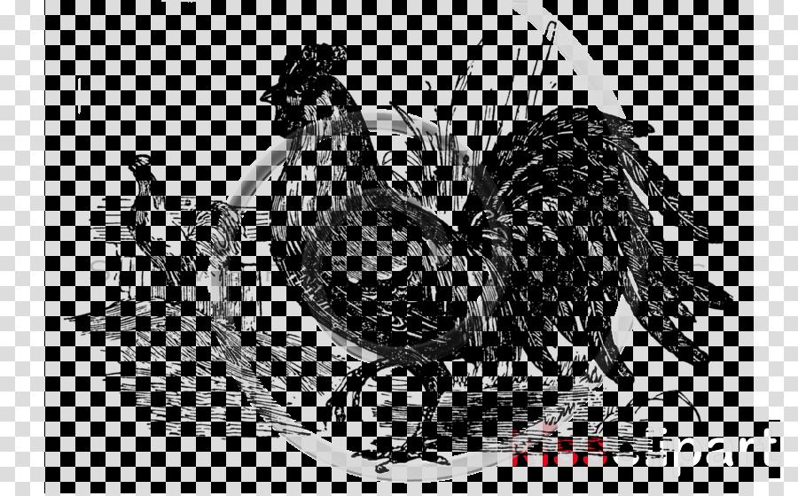chicken rooster bird fowl livestock