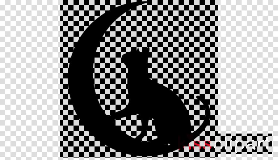 cat small to medium-sized cats black cat black white
