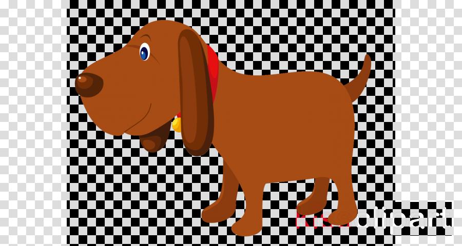 dog cartoon sporting group dachshund liver