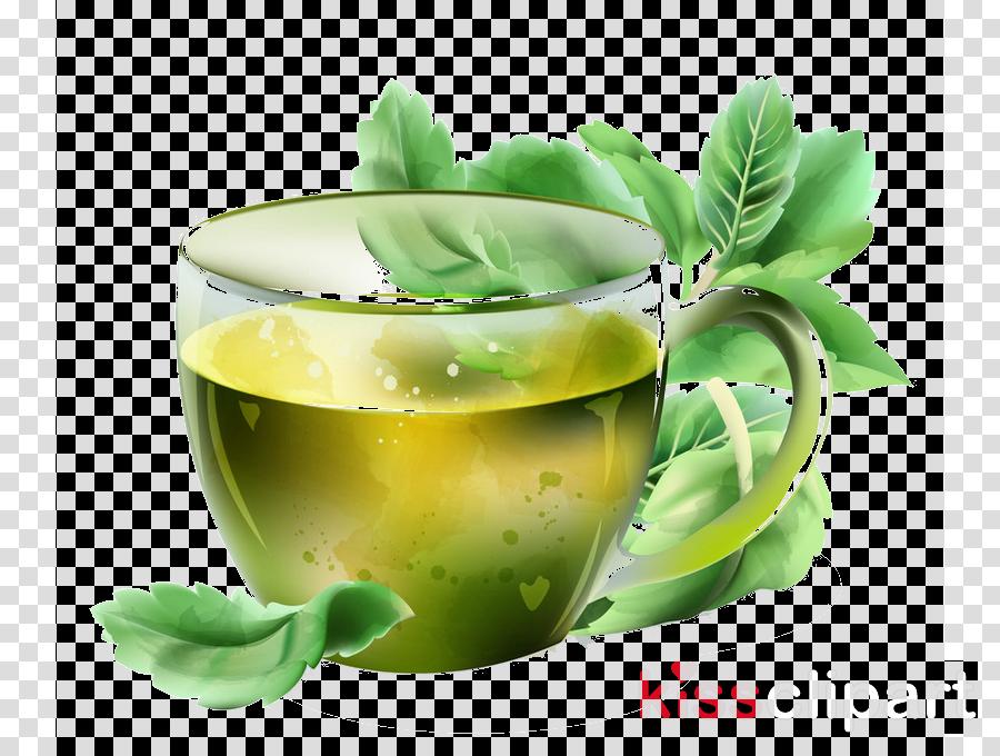 green herbal drink vegetable juice mint