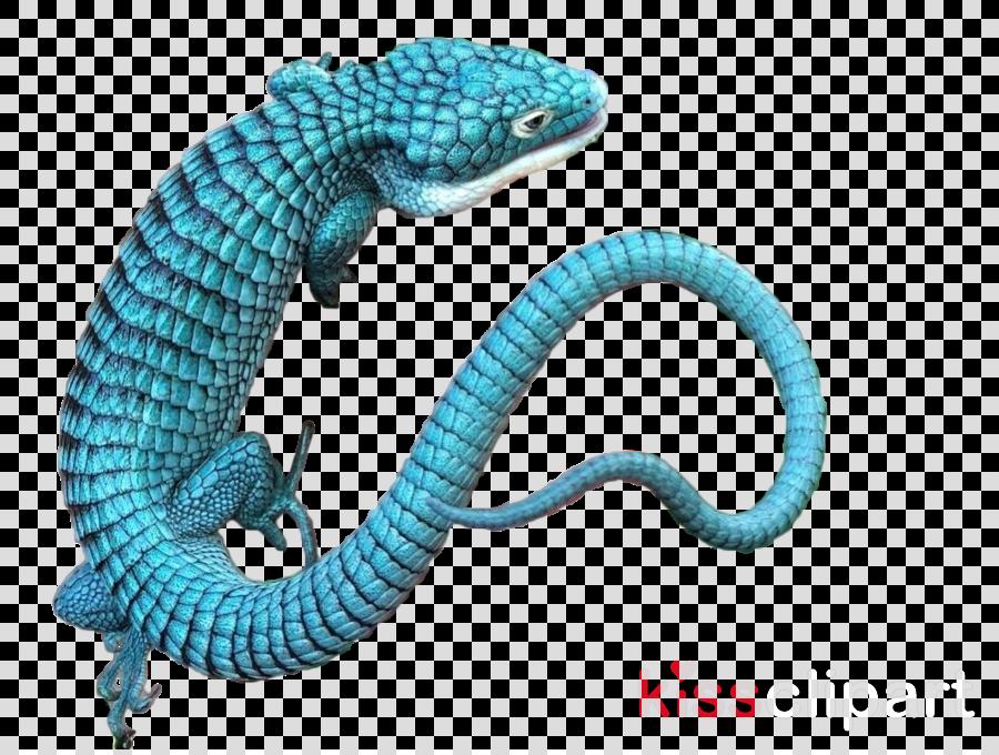 reptile scaled reptile animal figure lizard wall lizard