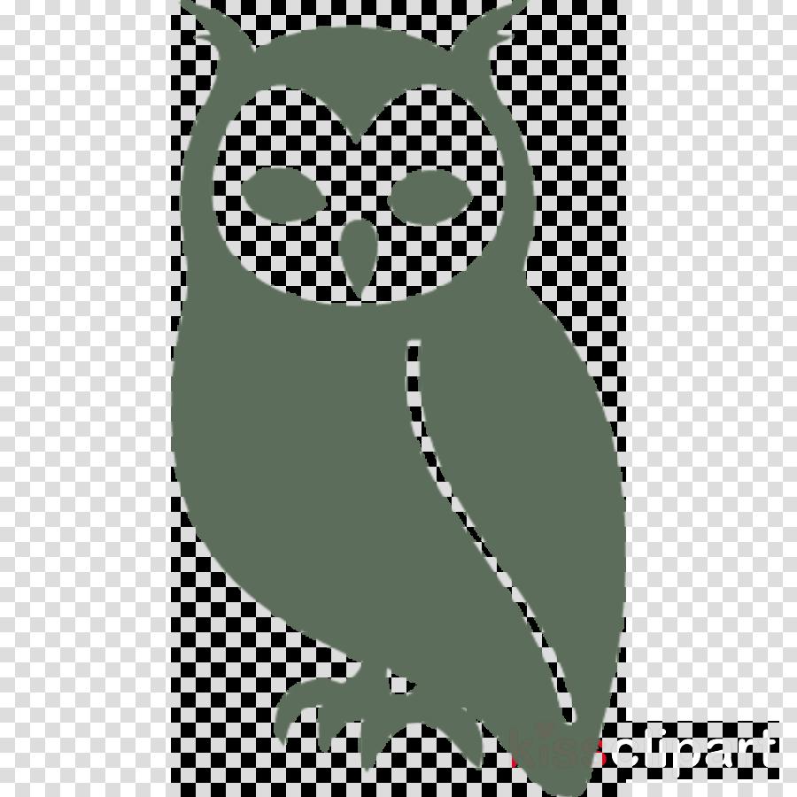 owl green bird bird of prey snowy owl