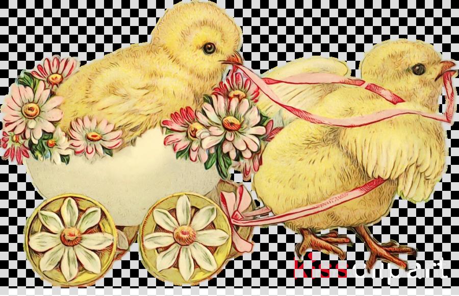 bird chicken easter