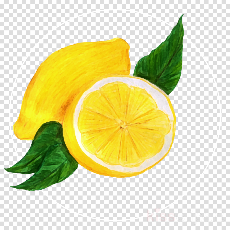 lemon yellow lime citrus citron