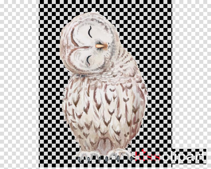 bird owl snowy owl bird of prey beak