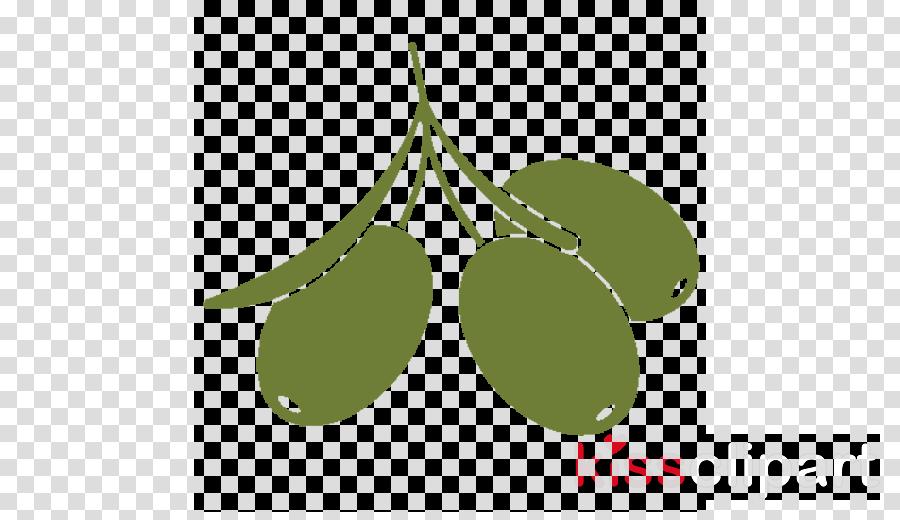 leaf green plant olive tree