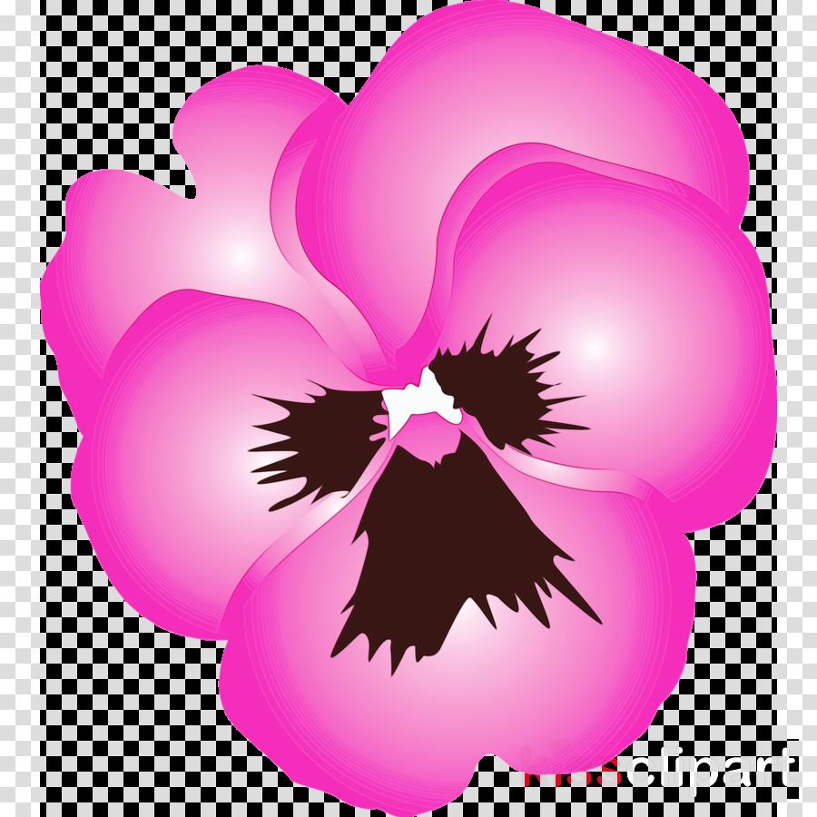 pink violet purple petal plant