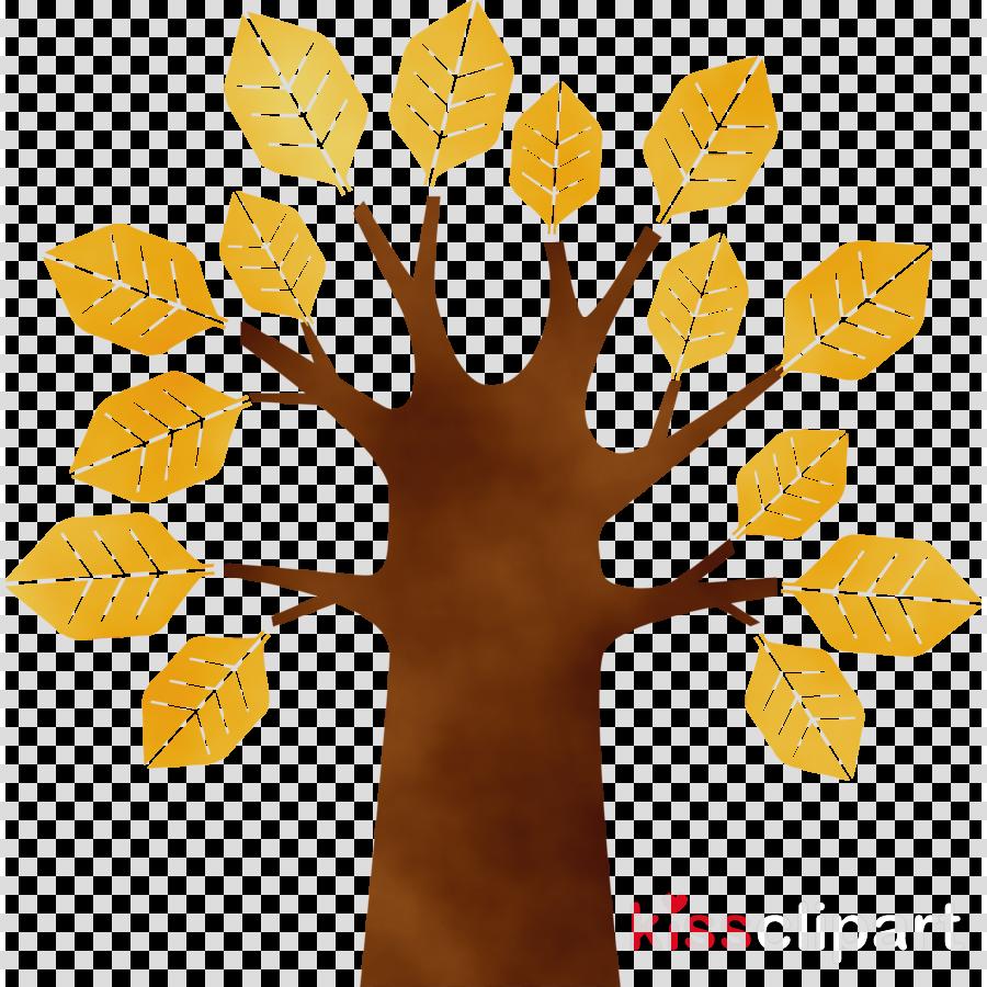 leaf yellow tree woody plant plant