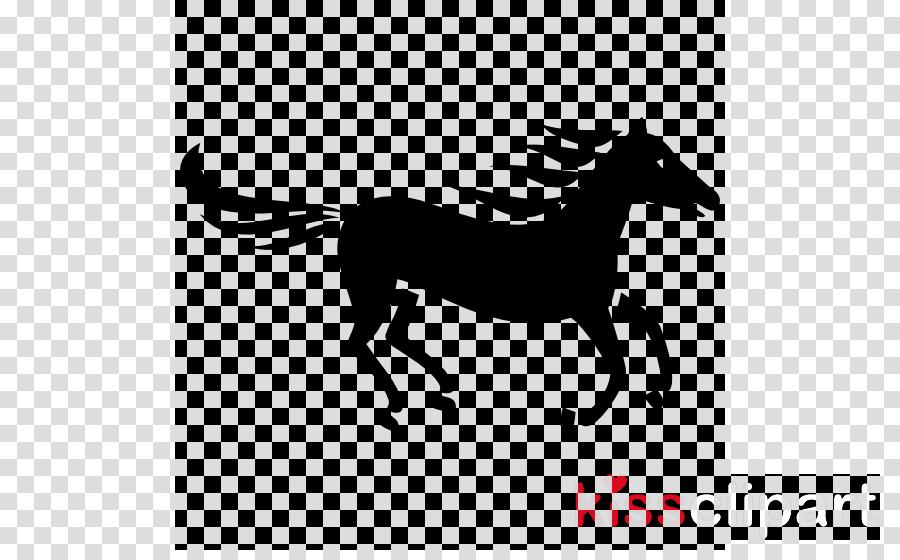white horse mane head black-and-white