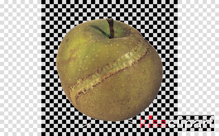 granny smith fruit apple plant asian pear