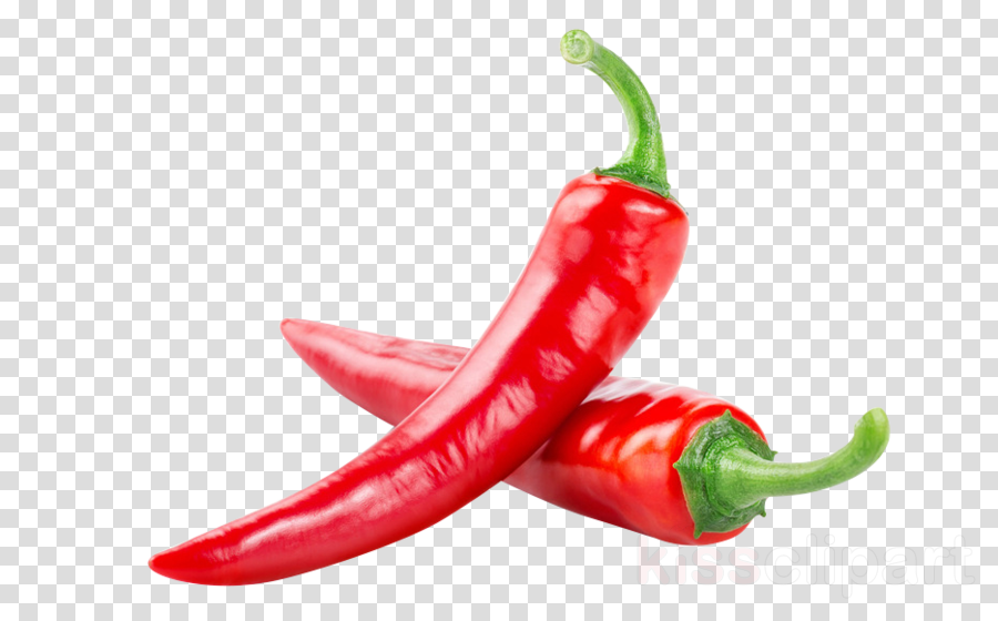 chili pepper malagueta pepper serrano pepper bird's eye chili tabasco pepper