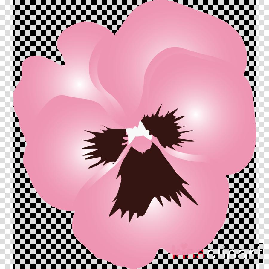PANSY Spring Flower