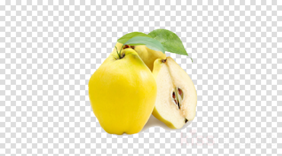 food yellow plant fruit quince