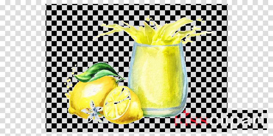 yellow lemon-lime lemonade cocktail garnish drink