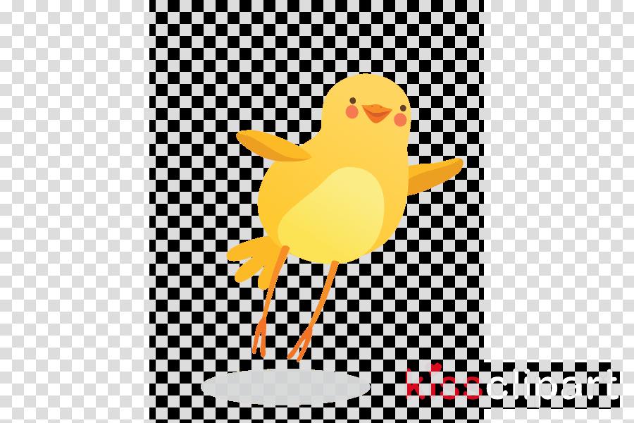 cartoon yellow bird beak water bird