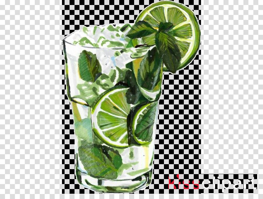 key lime kaffir lime plant lime drink