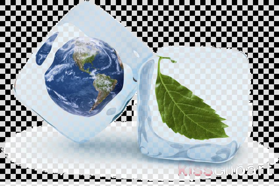 earth world planet leaf plant