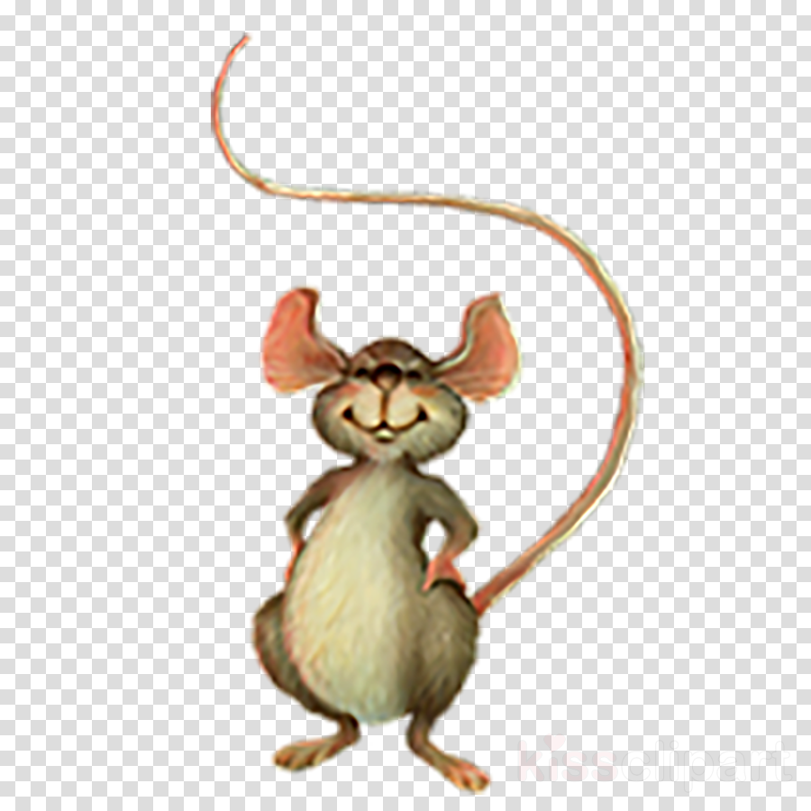 mouse rat muridae cartoon muroidea