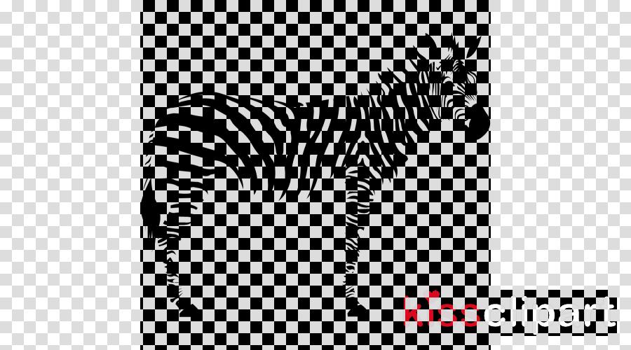 zebra wildlife animal figure snout black-and-white