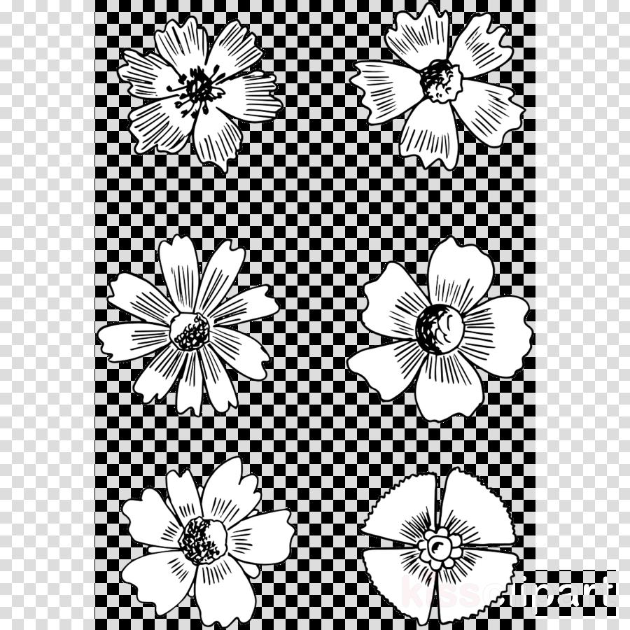 white flower black-and-white plant petal