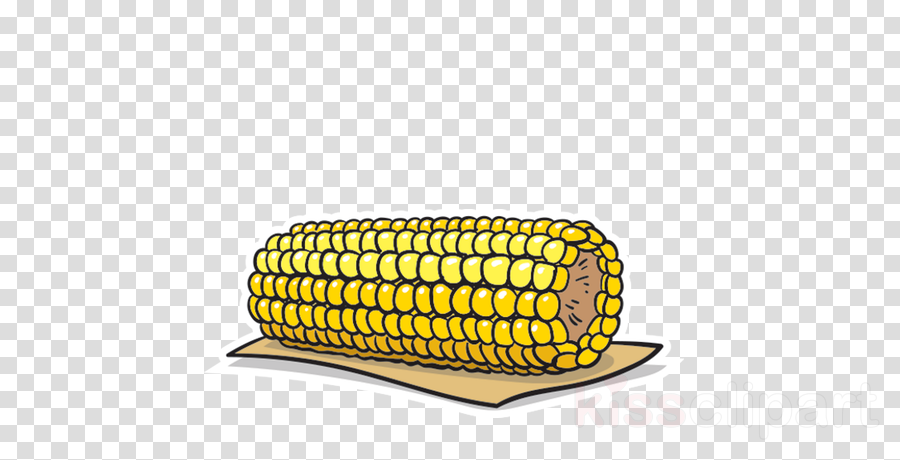 corn kernels corn on the cob sweet corn corn vegetable