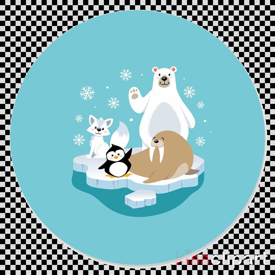 cat polar bear