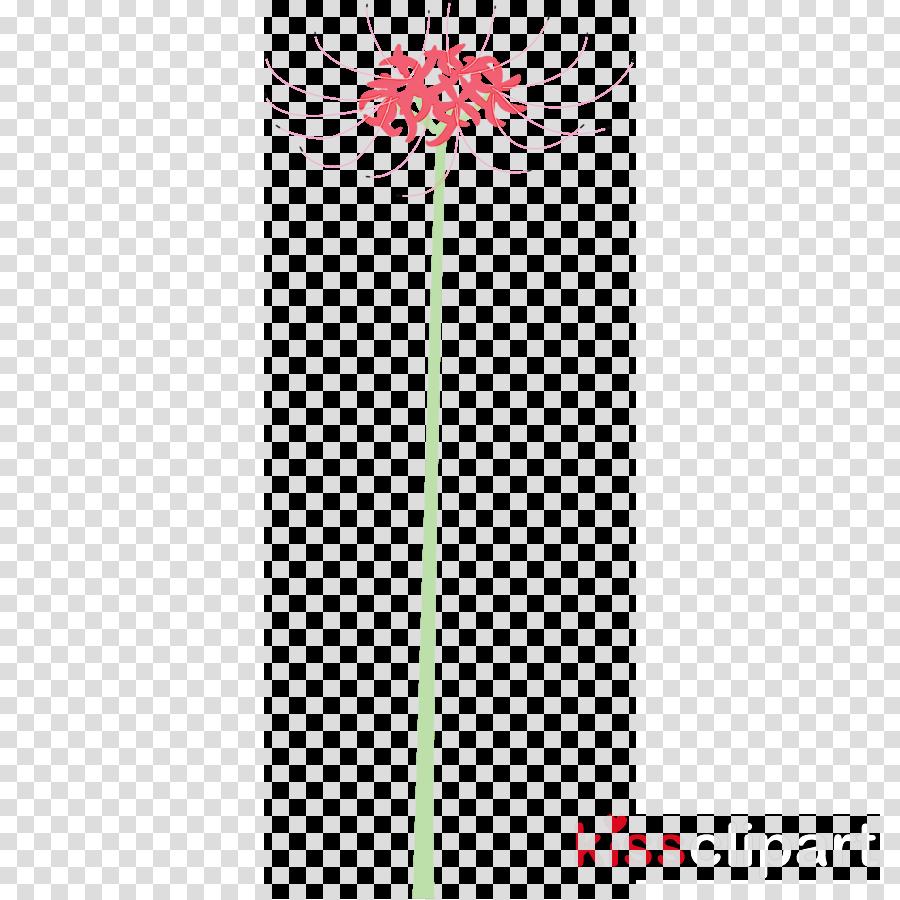 Hurricane Lily flower