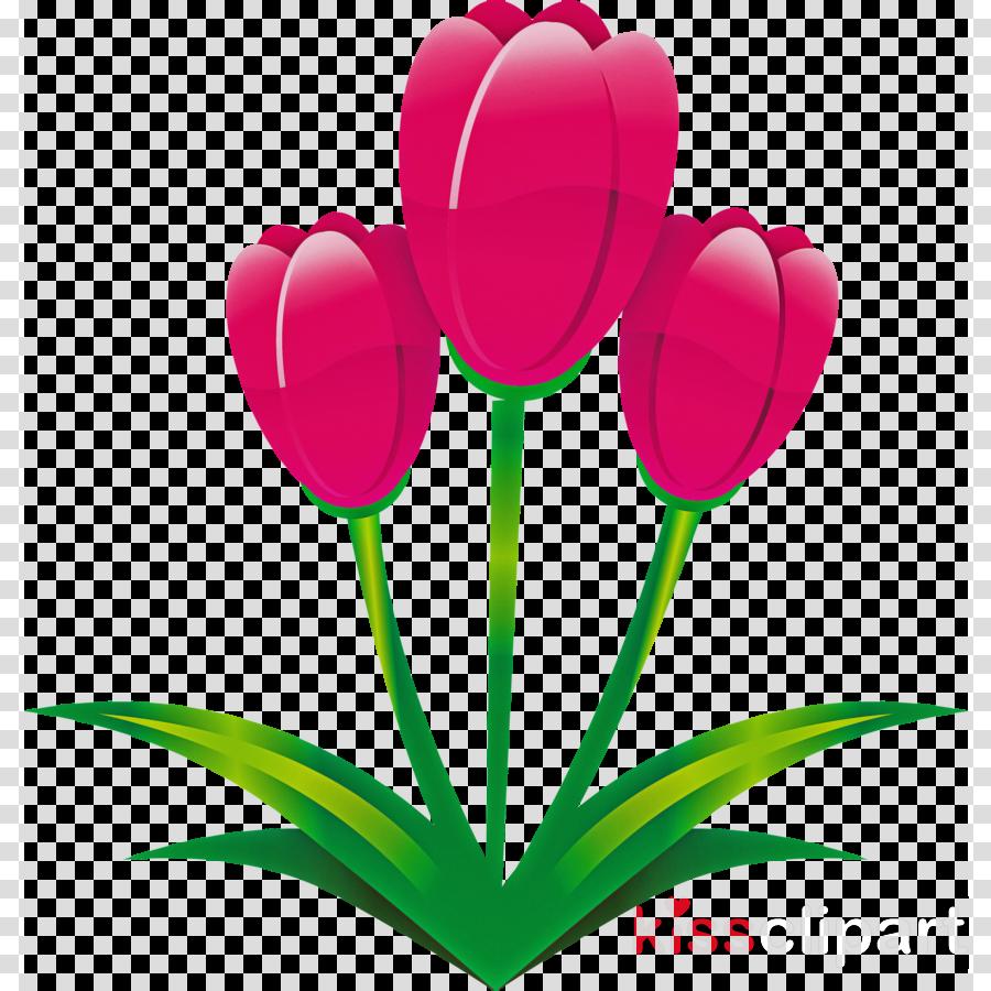 easter flower spring flower