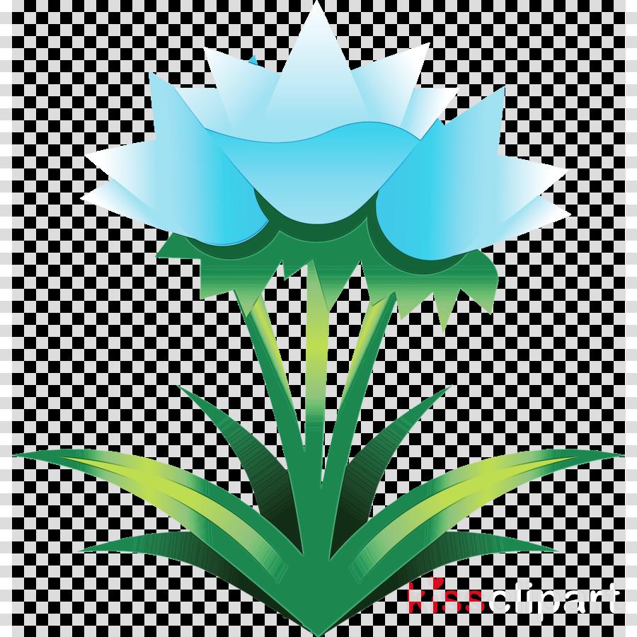 green leaf plant grass flower