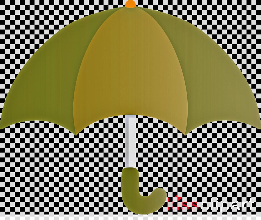 green leaf umbrella plant shade