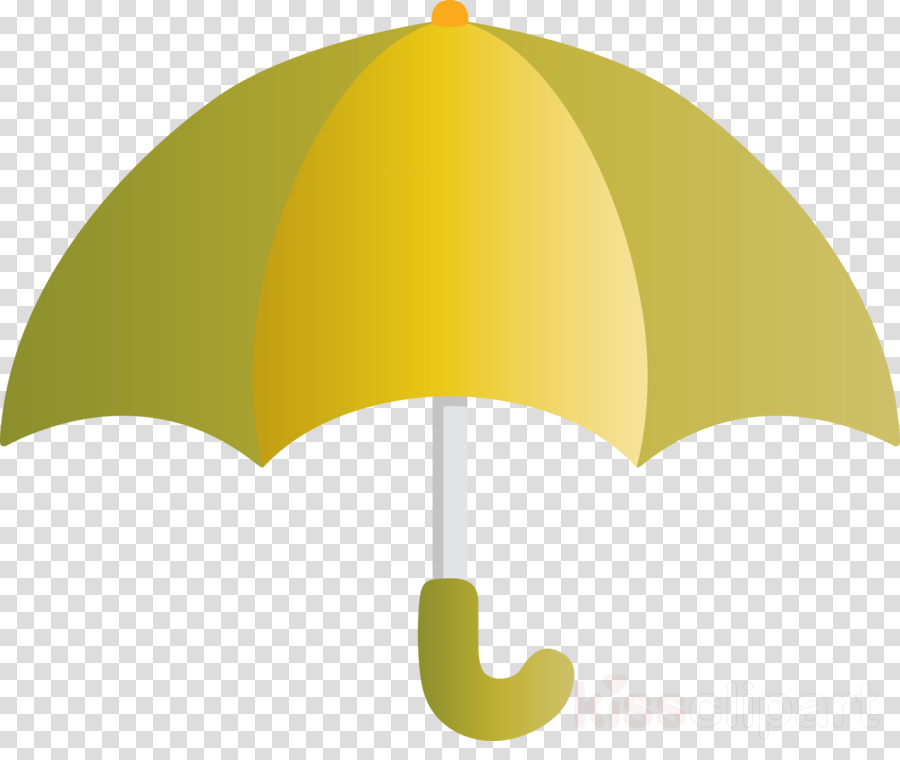 green yellow leaf umbrella plant