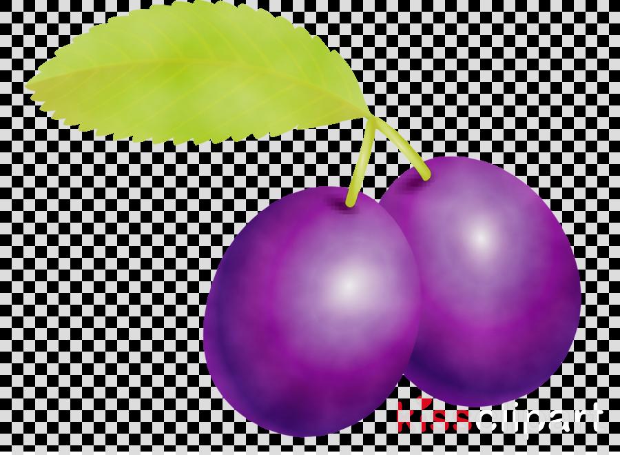 violet purple plant leaf fruit
