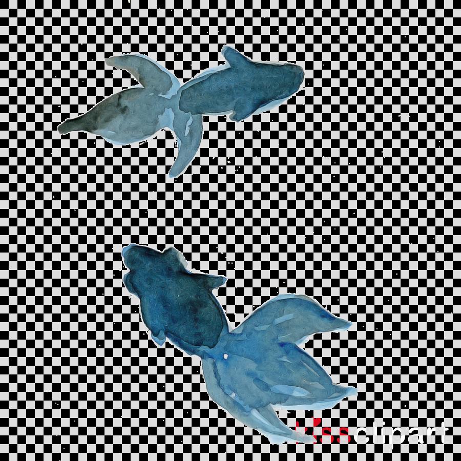 turquoise dolphin animal figure cetacea fin