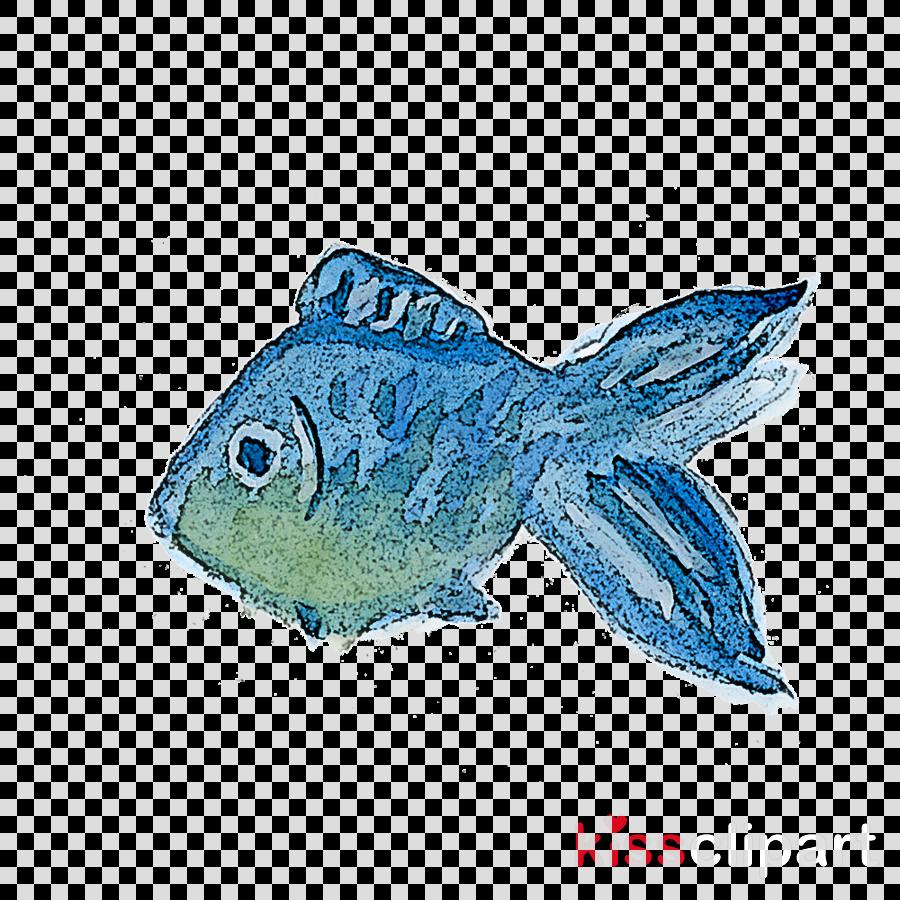 fish fish turquoise