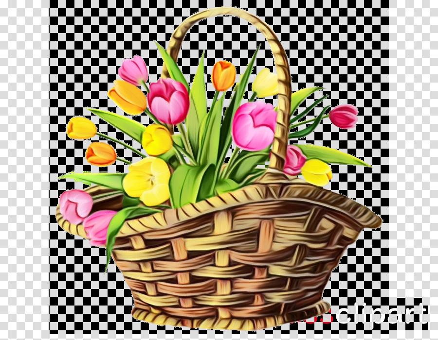 flowerpot flower tulip plant spring