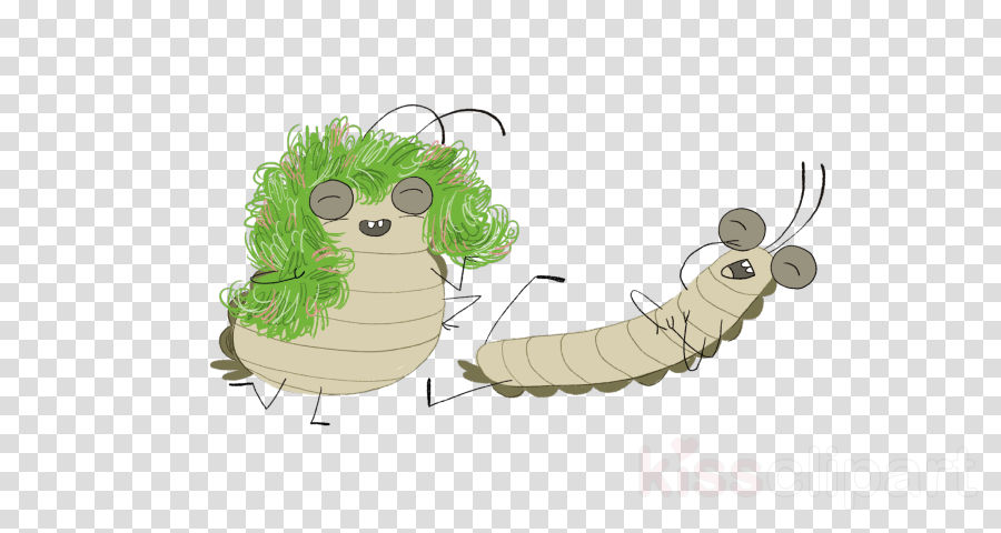 caterpillar insect cartoon larva