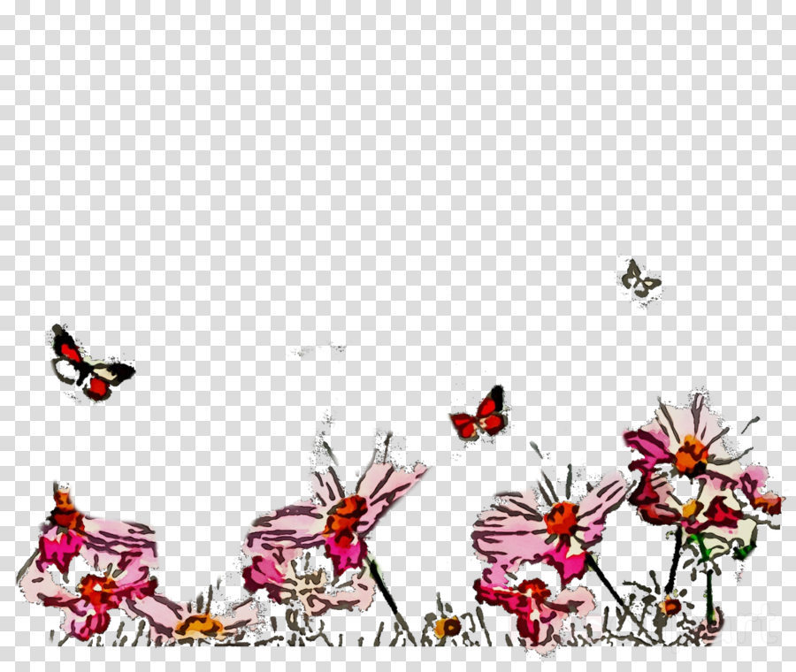 butterfly pink pollinator moths and butterflies insect