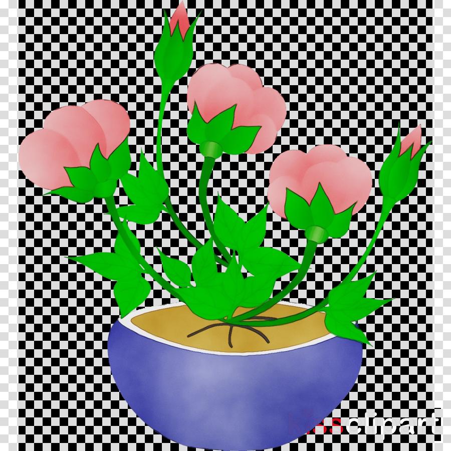 flowerpot flower plant plant stem petal