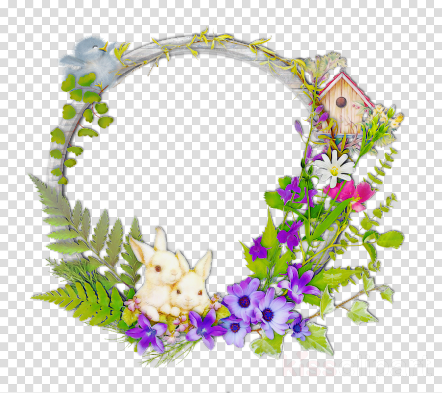 lei flower plant wreath morning glory